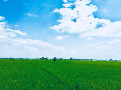 थरूहट क्षेत्रमा जग्गाको मूल्य आकाशियो