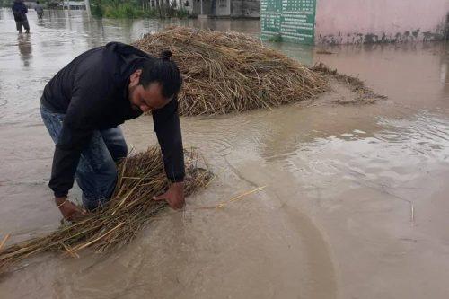 बर्दियाको राजापुर र गेरुवा क्षेत्र डुबानमा, किसानलाई राहत दिने घोषणा